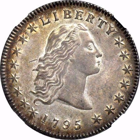 Picture for category Flowing Hair Dollar (1794-1795)